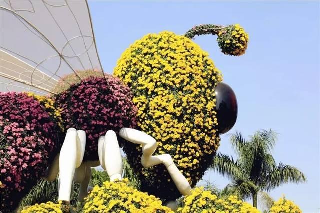 """以花语采菊蕊为主粉色展现了蜜蜂般造型的蜜蜂""""小场景""""身上的""""花梦幻迷你蝴蝶兰的童话图片"""