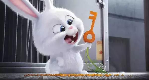 被史上最邪恶兔子萌出血,超凶的!