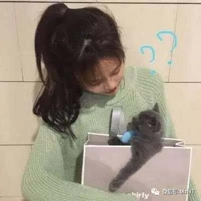 抱猫头像,2017微信头像女生高清 ps:原版高清无水印版请 微信公众号