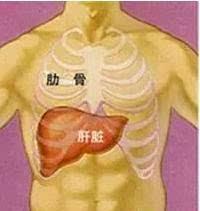 肝区疼痛是怎么回事_具体位置如下图(图1)所示: 肝区疼痛 需警惕 !