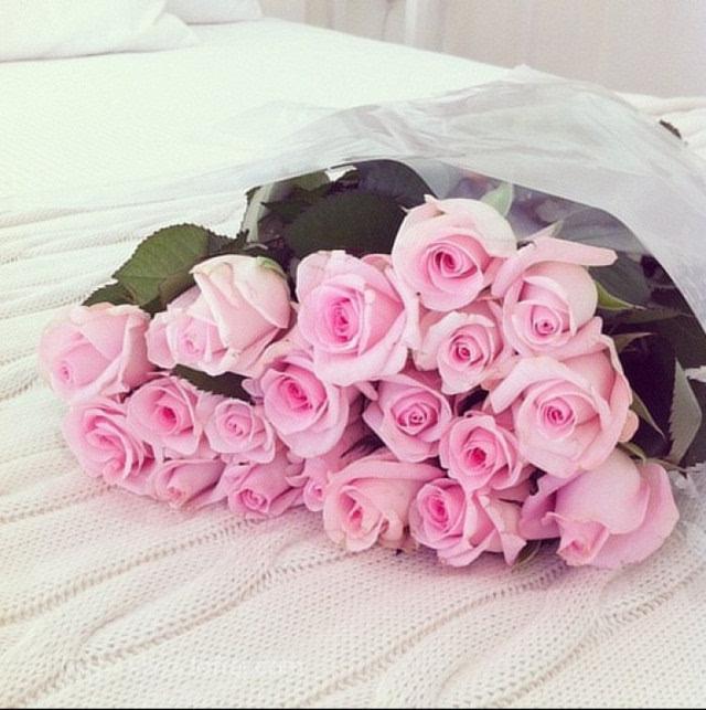 关于玫瑰花的故事