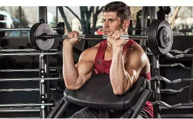 如何专门锻炼小臂上的肌肉:手臂肌肉锻炼方法大全