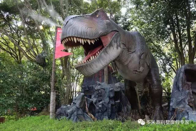 推荐指数:★★★★★ 这家酒店位于野生动物园(bali safari&marine