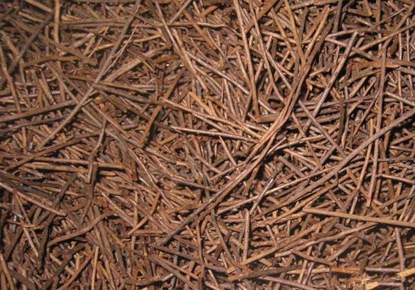 木质材料培育基