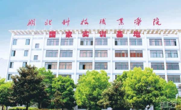 阿里巴巴集团,江苏汇博机器人技术公司,北京正保会计事务所,万豪国际
