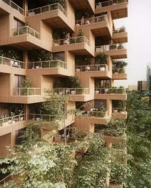 """""""多伦多树塔""""将继续加拿大 在木结构高层建筑中的开创性工作 利用"""