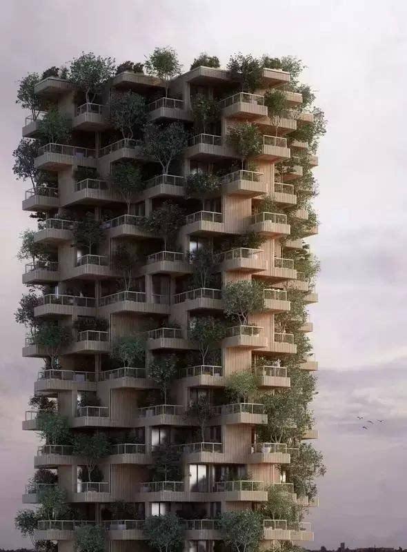 这是一座18层高的木结构混合用途的住宅楼 堪称加拿大最大 这个塔楼