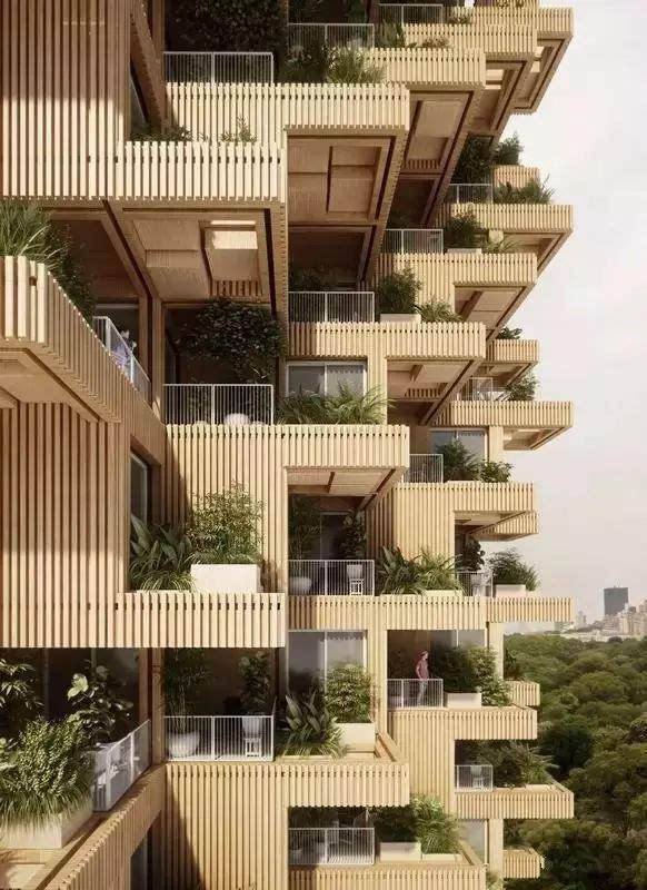 18层木结构住宅楼,开启可持续建筑的新模式