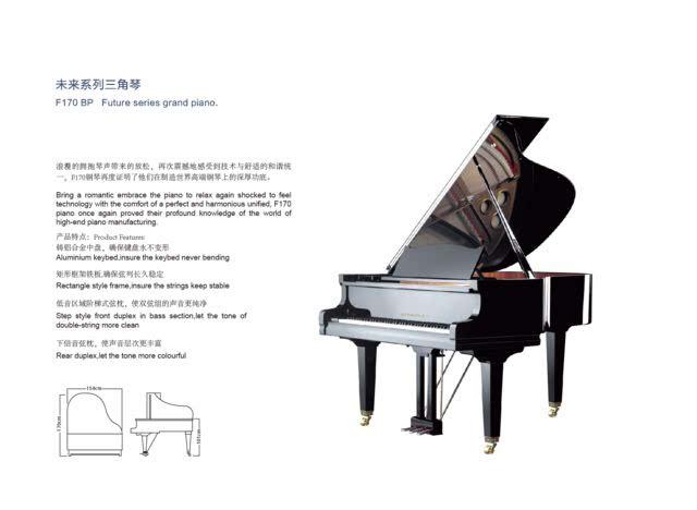 德国罗切尔钢琴第三届(巴黎)中国新春艺术节图片