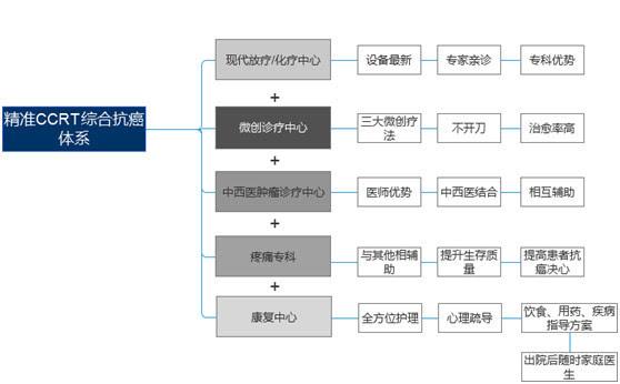 ccrt艺术_精准ccrt综合抗癌体系
