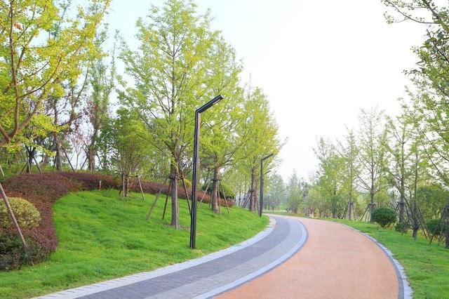 南通开发区能达生态通廊举办 能达生态通廊南连老洪港湿地公园,北接通
