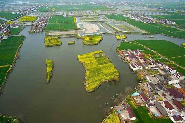 在海安,有一个中国美丽田园水乡叫白甸.