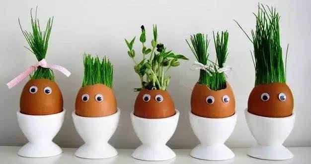 蛋壳宝宝手工制作大全图片