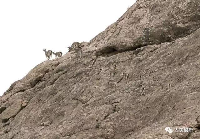 摄影家梁达明镜中柴达木盆地的明珠《昆仑山—阿尔金山》