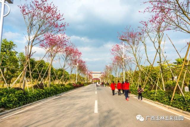 当你不得不对生活妥协时,攻略自驾在您身后-旅游频道绵阳田园蜀南竹海旅游五彩图片