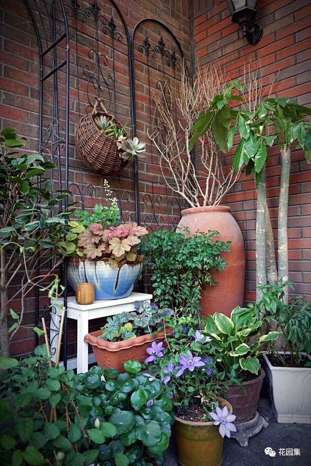 远眺群山, 因此我选用大型红陶盆,黑色铁艺拱门和铁艺桌椅构成小花园图片