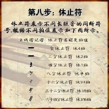 (3)放在五线谱开头 , 分别为高音谱号和低音谱号.
