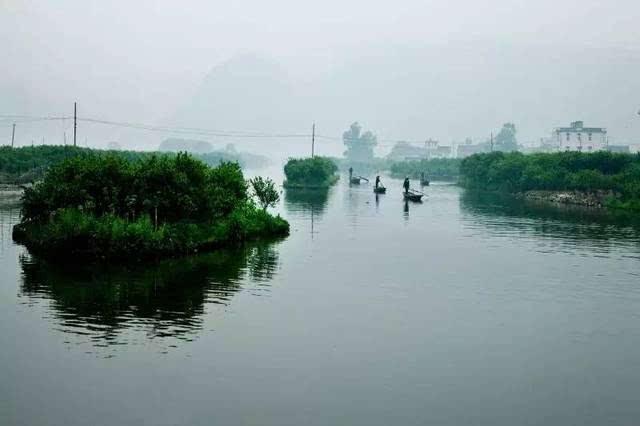三垟湿地位于温州生态园,规划总面积10.67平方公里.图片