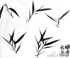 国画水墨画竹子的各种入门技法画法步骤图文详解图片
