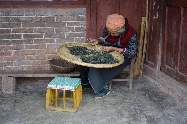 欧美老太太做爱a片_易武古茶山,捡黄片的老奶奶