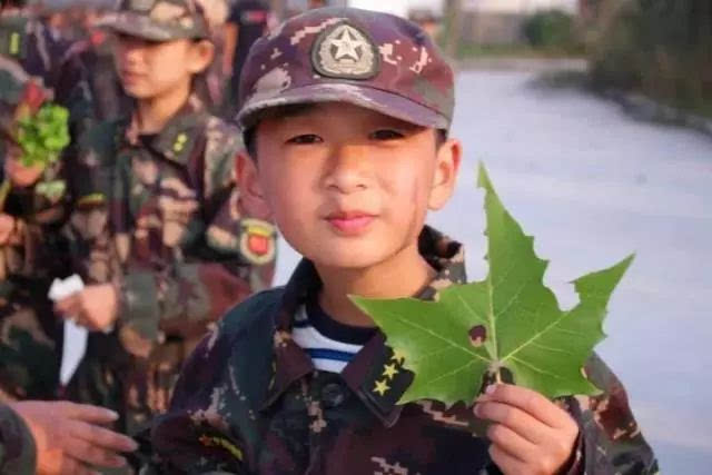 主题营 |我的中国梦——滨河第一小学社会实践活动