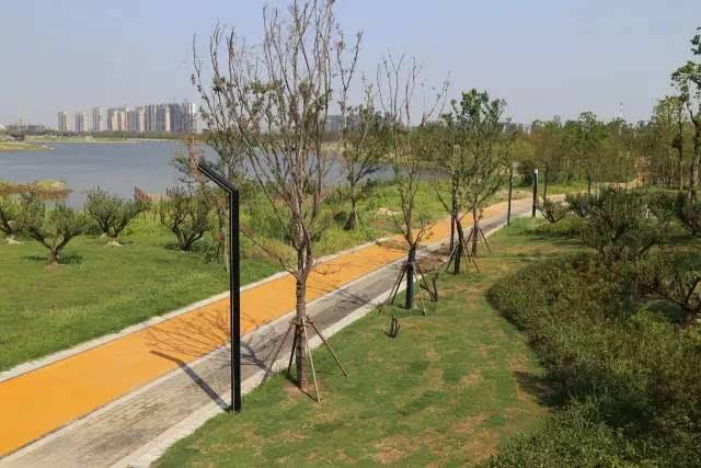 南通开发区能达生态通廊启幕