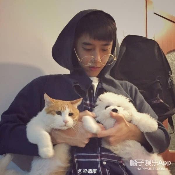 成人三级撸狗网_日常就是撸猫撸狗.