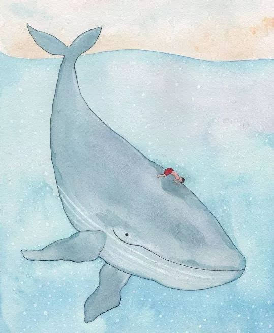 看到她画的笑脸鲸鱼,我也不自觉的笑了起来图片