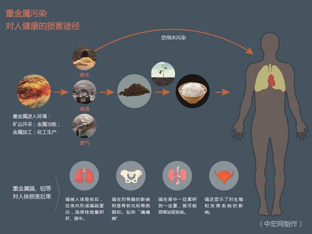 农药化肥的危害_如何防止土壤污染危害(农药,化肥,水)