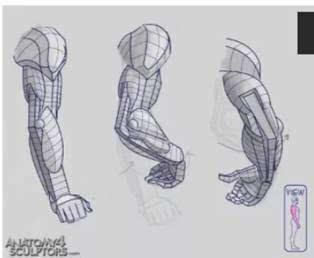 肩膀是指人的胳膊与躯干相连接的部分,具体结构需要了解,画的时候图片