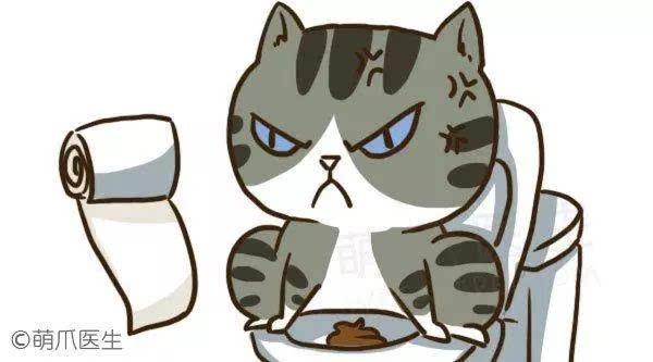让自己的气味四处飘散可能让猫咪感到压力.图片