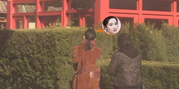 刘亦菲与妈妈相约聚餐,穿皮草大衣尽显富态,刘晓莉仪态挺拔端庄