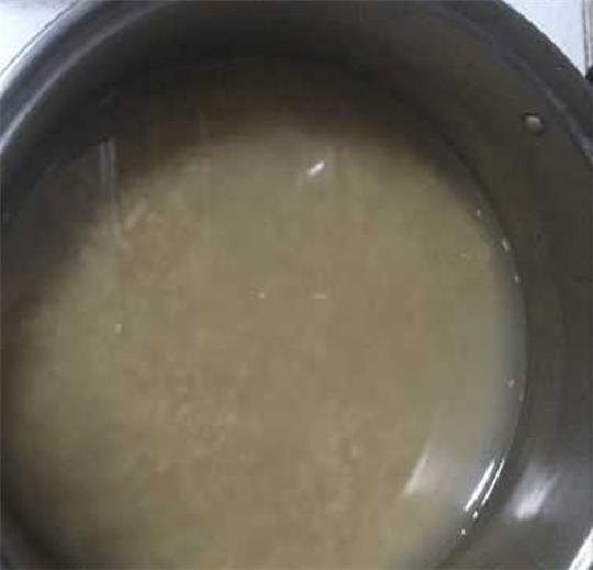分享一款钓大鲤鱼和大草鱼的发酵饵,好用到爆哦