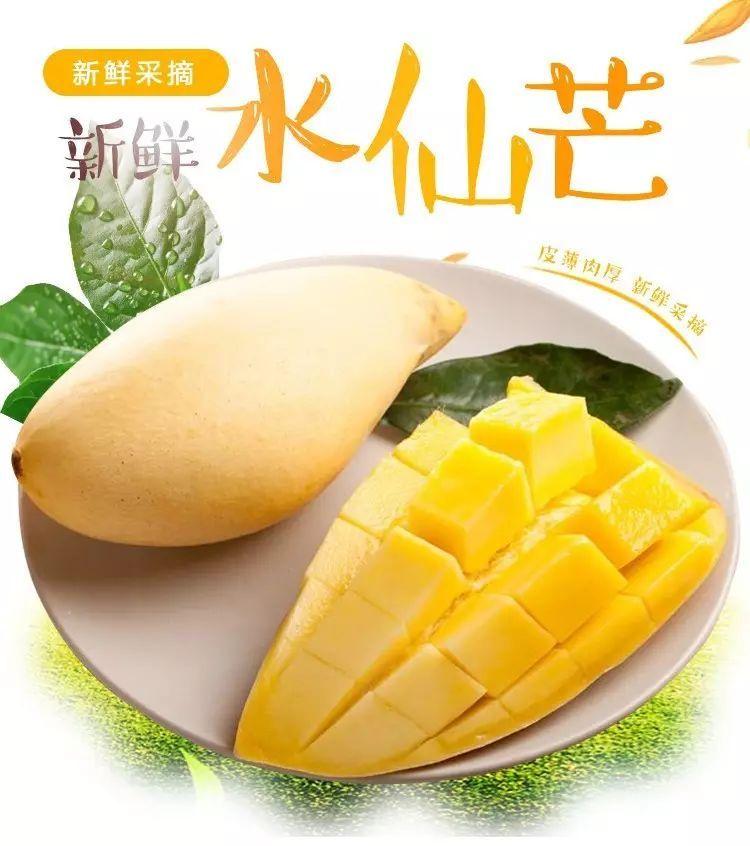 台湾水仙芒果,不得不爱的美味!鲜、嫩、甜,只给您精选的!