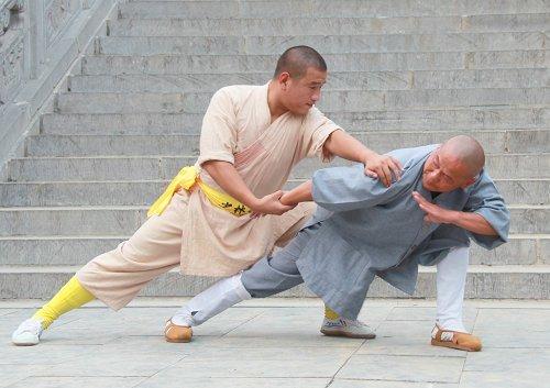 成年人还能学武吗?武术学院还收成年学徒吗?