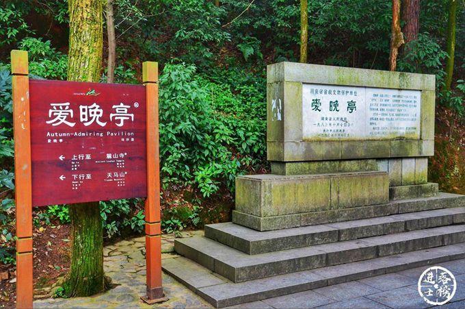 """浙江一隧道上演""""停车坐爱""""枫林晚-福利巴士"""