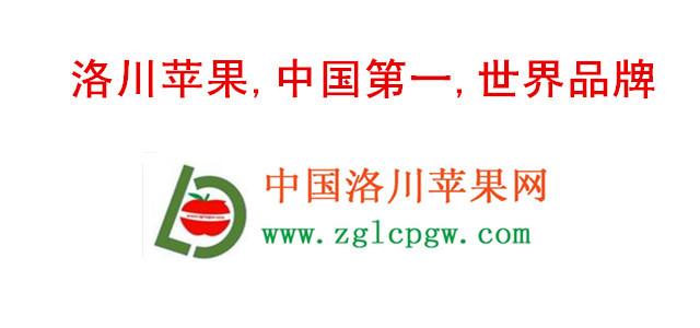孔令义将军为中国洛川苹果网题字,书法,题字,题匾,名家,真迹,cntizi.com