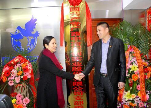 中冶军创集团:坚持党建领航 助推企业腾飞