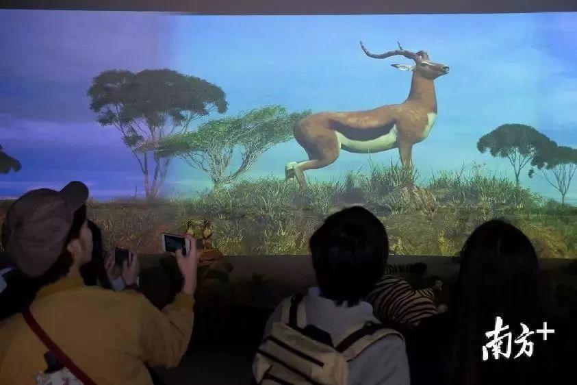 2018年1月1日,全球最大的VR动物园在中国开业,一起去看看吗?