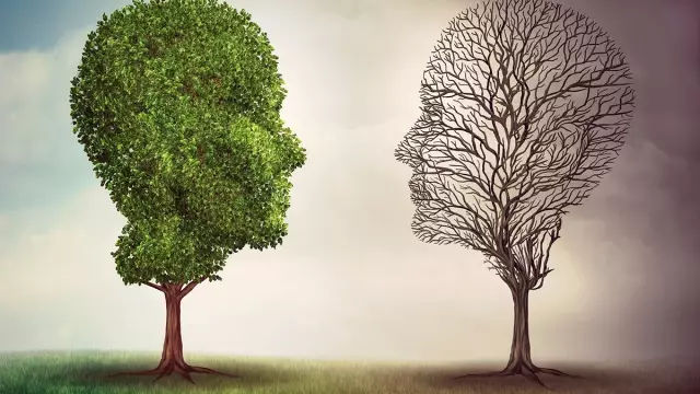 双向情感障碍的最佳治疗方案 网络快讯 第1张