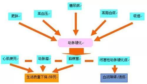 閉塞 性 動脈 硬化 症 原因
