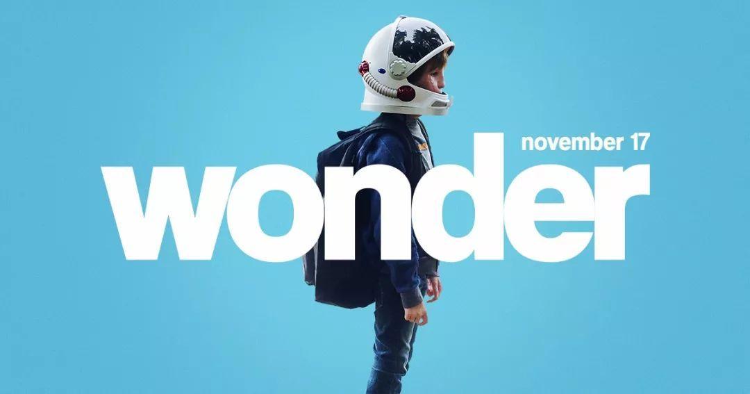 畅销小说排行榜2013_豆瓣8.8分的励志英文书Wonder《奇迹男孩》