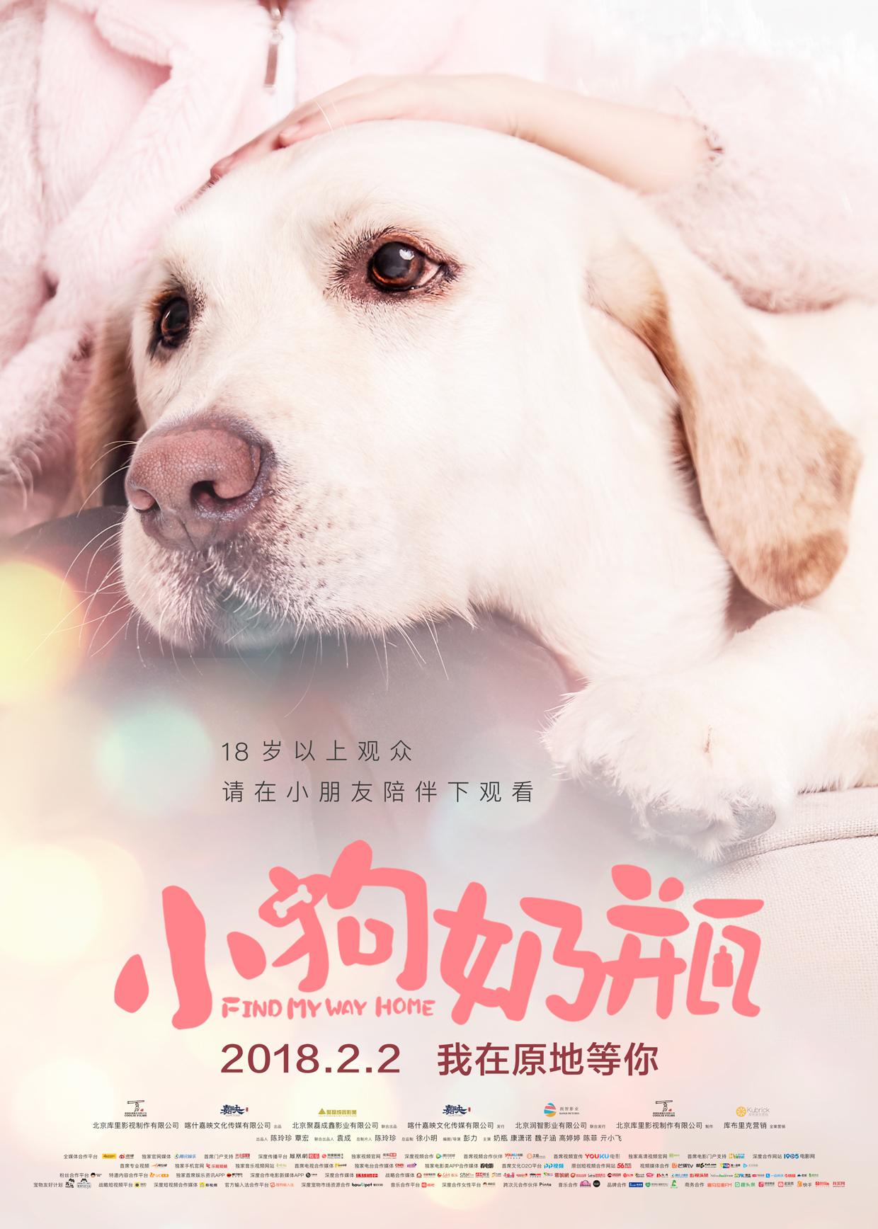 《小狗奶瓶》海报预告双发 爱与陪伴诠释成长真谛