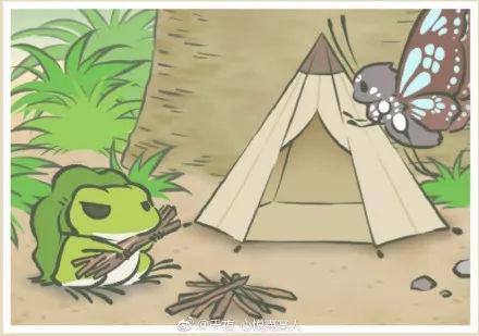 人口失踪报警流程_你的蛙在旅行途中可能会遭遇这些事!失踪人口报警指南