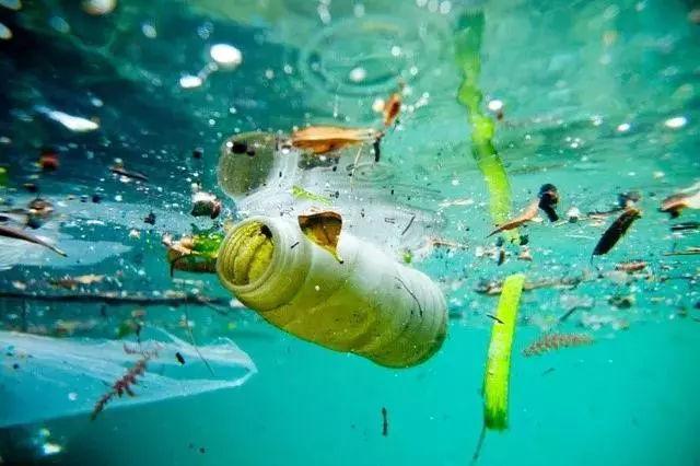 澳洲两名青年坚持10年,研发海洋污染克星-Seabin,终获成功