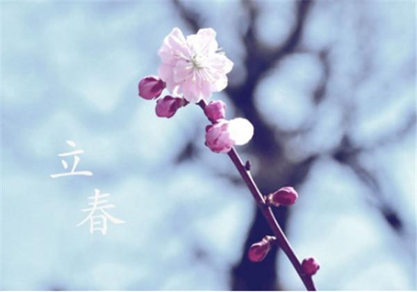 立春 致敬 —郑俊文
