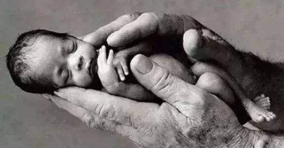 反堕胎微电影《无声的哭泣》-让良知觉醒
