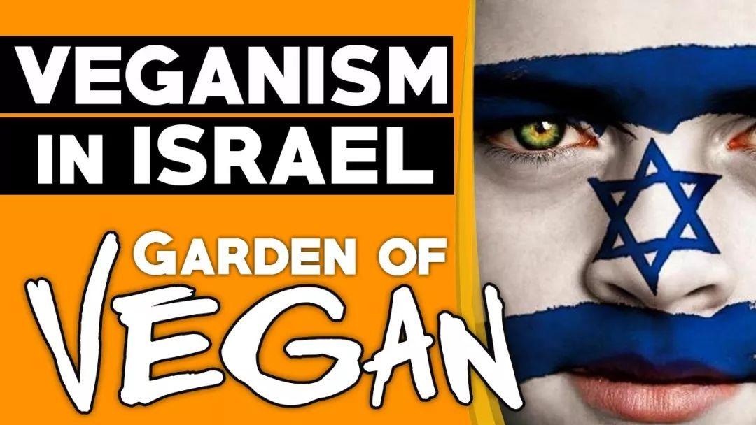 以色列针对素食者推出优惠健康保险!连保险公司都觉得素食者活的长
