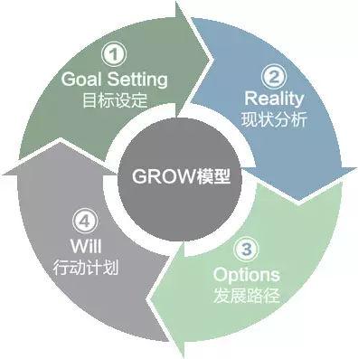 GROW模型的分析与运用