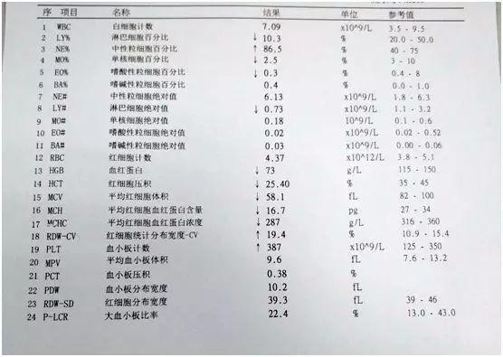 血常规白细胞_教你如何看懂血常规报告
